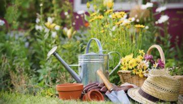 Gardening-624x416